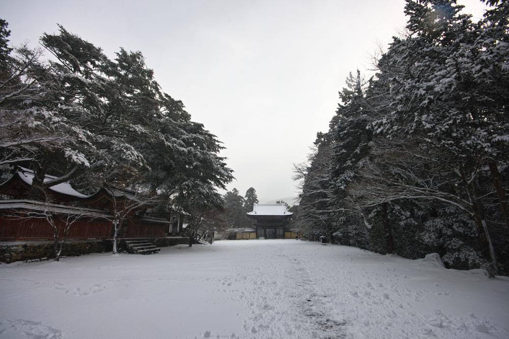 神護寺 雪景色 2016                                 _f0021869_18534159.jpg