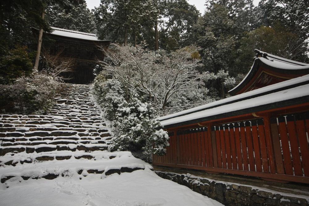 神護寺 雪景色 2016                                 _f0021869_185354100.jpg