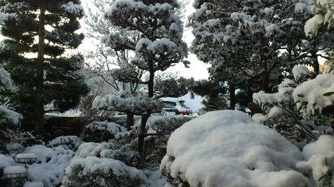 寒い日は読書(^^)_a0203987_1059940.jpg
