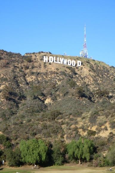 ハリウッドのわんこ_b0275998_16231762.jpeg