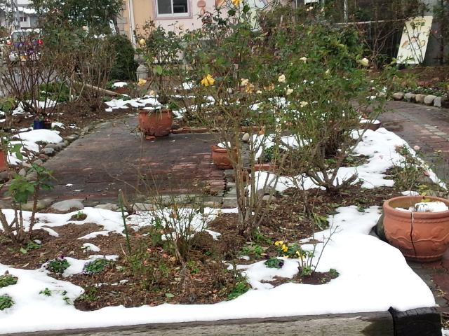 雪が残っている_d0150722_20093891.jpg
