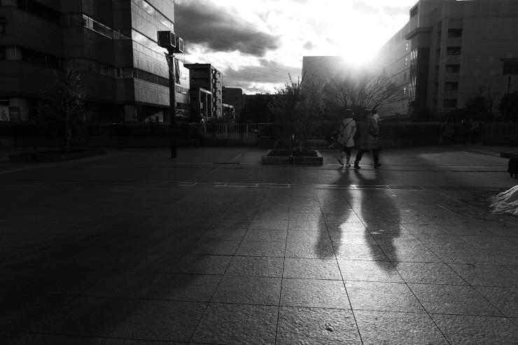 shadow & light (逆光)_e0342136_20590718.jpg