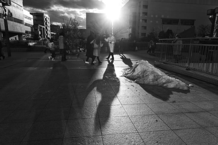 shadow & light (逆光)_e0342136_21000911.jpg