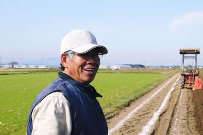 有機栽培の水田ごぼう 土作りから種まき、そして現在の発芽まで(2020) _a0254656_17582481.jpg