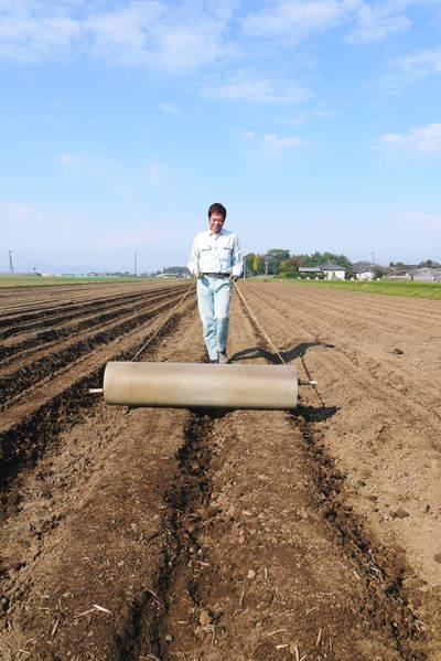 有機栽培の水田ごぼう 土作りから種まき、そして現在の発芽まで(2020) _a0254656_18153451.jpg