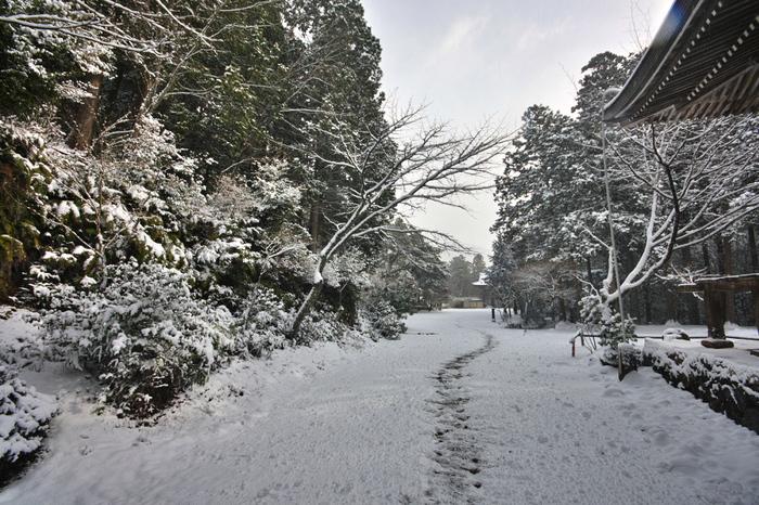神護寺 雪景色 2016                                 _f0021869_21201627.jpg