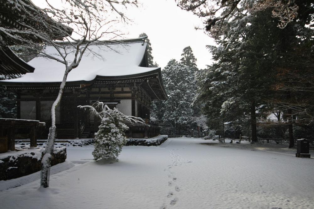 神護寺 雪景色 2016                                 _f0021869_21225995.jpg