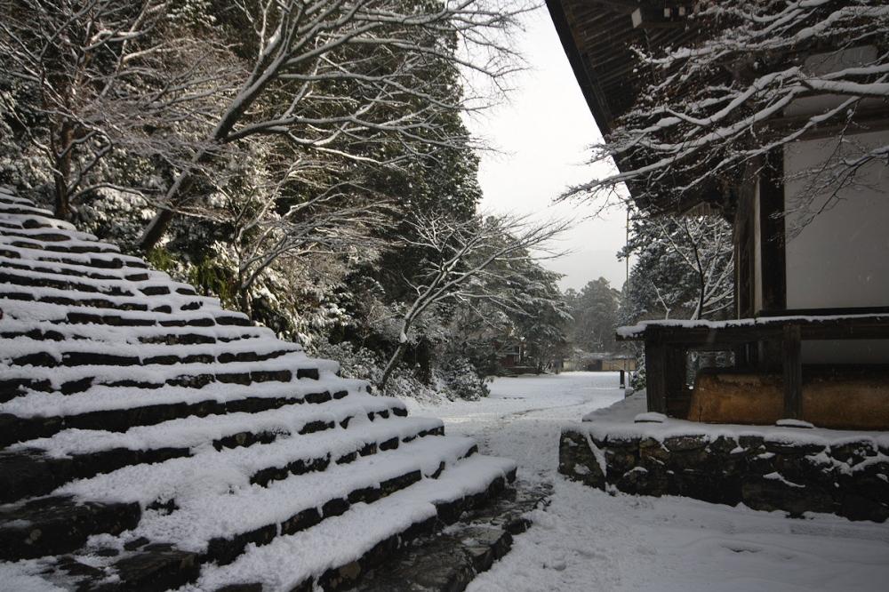 神護寺 雪景色 2016                                 _f0021869_2126642.jpg
