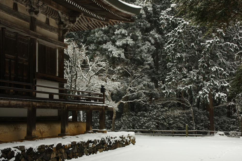 神護寺 雪景色 2016                                 _f0021869_21383659.jpg