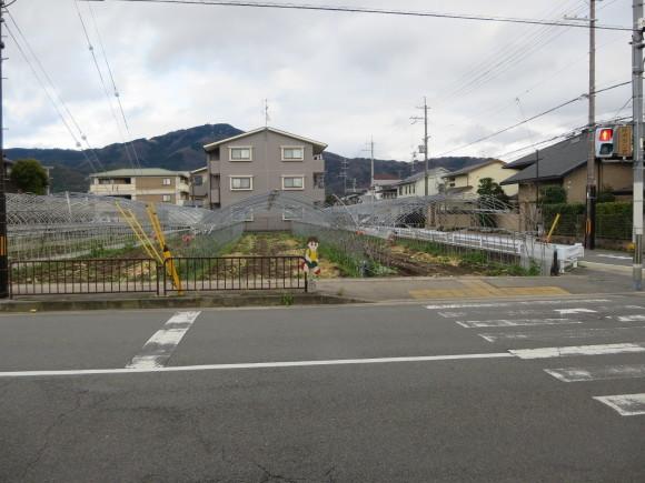 岩倉駅周辺の飛び坊多発地帯_c0001670_21031646.jpg