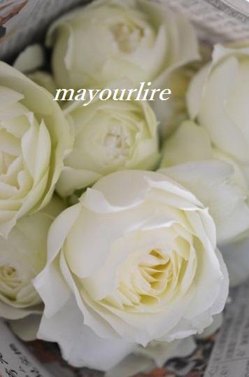 出番を待つお花たち_d0169179_2002999.jpg