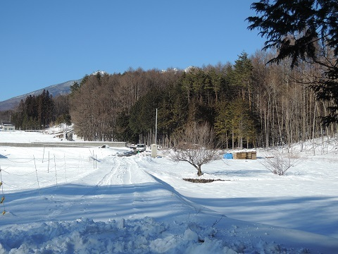 大泉町Y本さん邸の現場より 7_a0211886_15412308.jpg