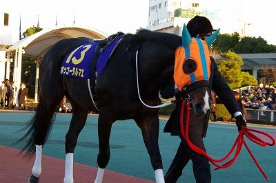 川崎記念は、ホッコータルマエが3連覇&史上最多のGI級10勝目の偉業達成!_b0015386_193175.jpg