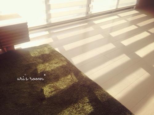 新居に一番最初に設置したモノ!それから朝日の入るリビング。_a0341288_17264072.jpg