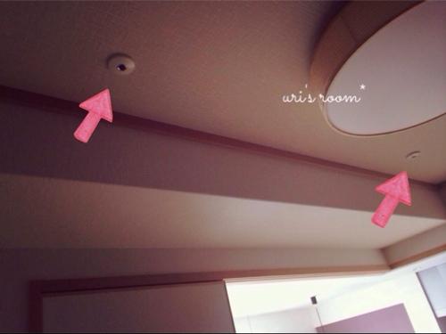 和室とホスクリーン。使い心地が素晴らしすぎる件。_a0341288_17271427.jpg