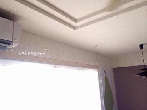 和室とホスクリーン。使い心地が素晴らしすぎる件。_a0341288_17271518.jpg