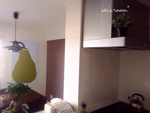 アラビア24h Avecプレートが揃いました!と、観葉植物ガジュ太郎が…。_a0341288_17273905.jpg