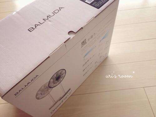 あの!憧れの扇風機、バルミューダのグリーンファンを買いました!_a0341288_17281115.jpg