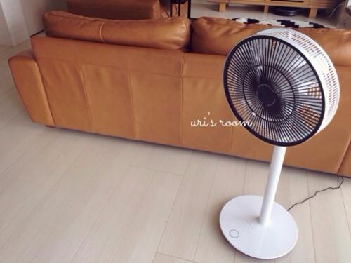 あの!憧れの扇風機、バルミューダのグリーンファンを買いました!_a0341288_17281125.jpg