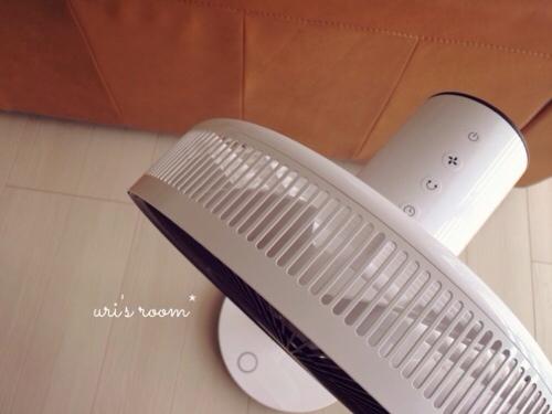 あの!憧れの扇風機、バルミューダのグリーンファンを買いました!_a0341288_17281128.jpg