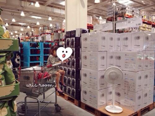 あの!憧れの扇風機、バルミューダのグリーンファンを買いました!_a0341288_17281151.jpg