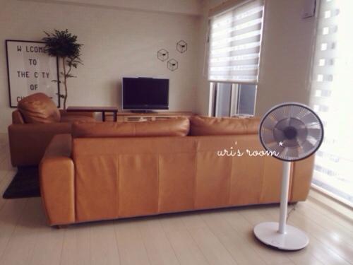 あの!憧れの扇風機、バルミューダのグリーンファンを買いました!_a0341288_17281268.jpg