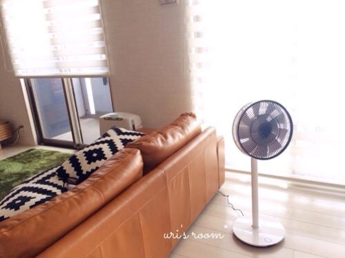 あの!憧れの扇風機、バルミューダのグリーンファンを買いました!_a0341288_17281296.jpg