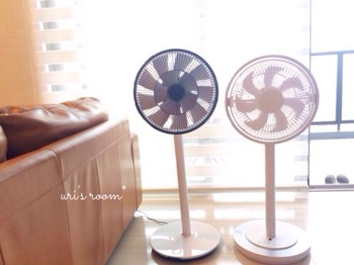 インテリアに溶け込む素敵な扇風機!グリーンファンとカモメファン(´∀`)_a0341288_17282249.jpg