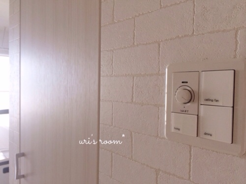 リビングの照明スイッチをもっと分かりやすく使いやすく!そしてベランダに大嫌いなアイツが…(´Д⊂グスン_a0341288_17284450.jpg