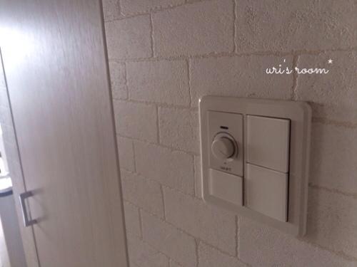 リビングの照明スイッチをもっと分かりやすく使いやすく!そしてベランダに大嫌いなアイツが…(´Д⊂グスン_a0341288_17284455.jpg