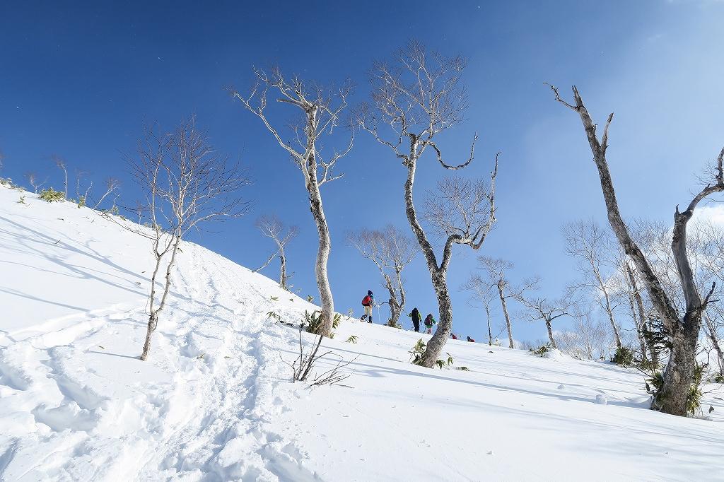 紋別岳から748mピーク、1月27日-速報版-_f0138096_22261393.jpg