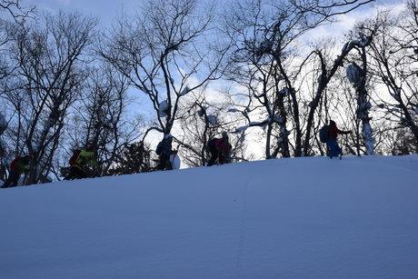 2016年1月23日札幌国際スキー場に近い白井岳支尾根の山を滑る_c0242406_1635483.jpg