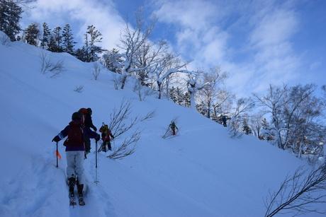 2016年1月23日札幌国際スキー場に近い白井岳支尾根の山を滑る_c0242406_16364780.jpg