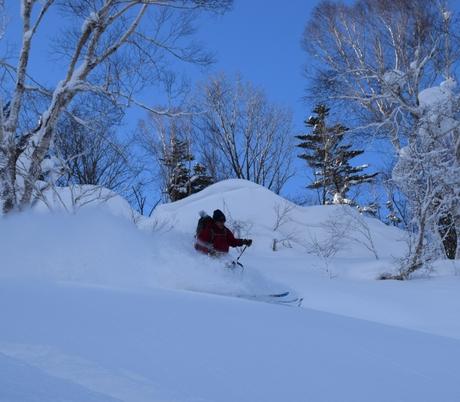 2016年1月23日札幌国際スキー場に近い白井岳支尾根の山を滑る_c0242406_164124100.jpg