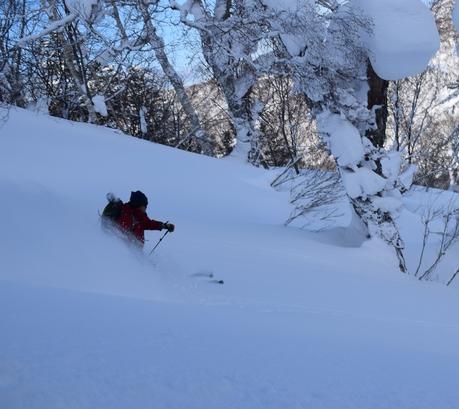 2016年1月23日札幌国際スキー場に近い白井岳支尾根の山を滑る_c0242406_1642032.jpg
