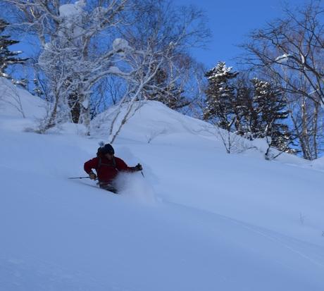 2016年1月23日札幌国際スキー場に近い白井岳支尾根の山を滑る_c0242406_16451051.jpg