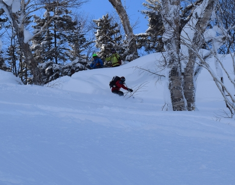 2016年1月23日札幌国際スキー場に近い白井岳支尾根の山を滑る_c0242406_1645576.jpg
