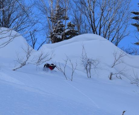 2016年1月23日札幌国際スキー場に近い白井岳支尾根の山を滑る_c0242406_16462817.jpg