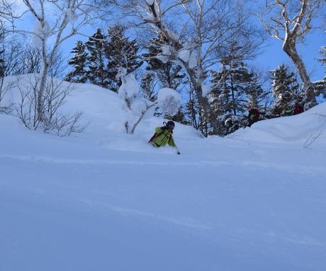 2016年1月23日札幌国際スキー場に近い白井岳支尾根の山を滑る_c0242406_16503628.jpg