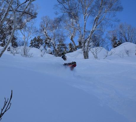 2016年1月23日札幌国際スキー場に近い白井岳支尾根の山を滑る_c0242406_1653786.jpg