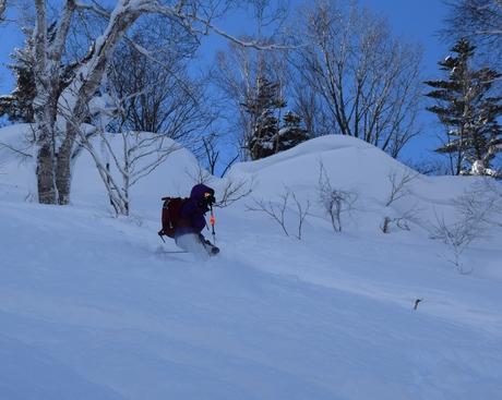 2016年1月23日札幌国際スキー場に近い白井岳支尾根の山を滑る_c0242406_16554188.jpg