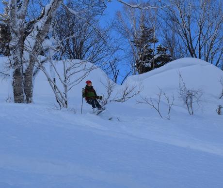 2016年1月23日札幌国際スキー場に近い白井岳支尾根の山を滑る_c0242406_17103140.jpg