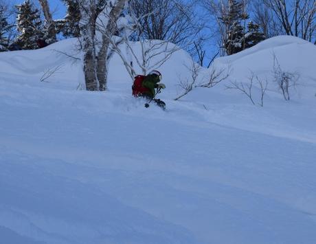2016年1月23日札幌国際スキー場に近い白井岳支尾根の山を滑る_c0242406_1711990.jpg