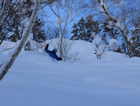 2016年1月23日札幌国際スキー場に近い白井岳支尾根の山を滑る_c0242406_171258.jpg