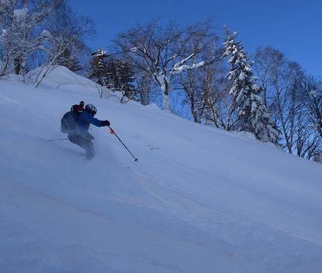 2016年1月23日札幌国際スキー場に近い白井岳支尾根の山を滑る_c0242406_17134091.jpg