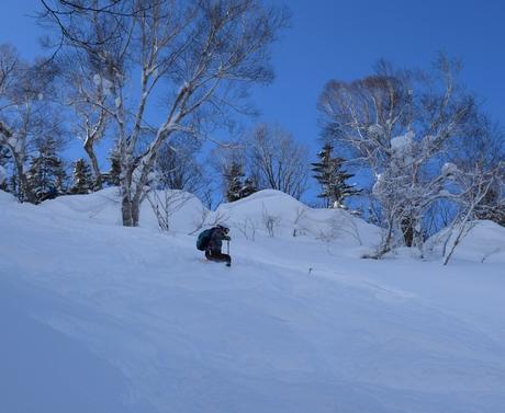 2016年1月23日札幌国際スキー場に近い白井岳支尾根の山を滑る_c0242406_1722163.jpg
