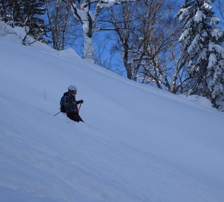 2016年1月23日札幌国際スキー場に近い白井岳支尾根の山を滑る_c0242406_1725174.jpg