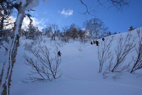 2016年1月23日札幌国際スキー場に近い白井岳支尾根の山を滑る_c0242406_1728364.jpg