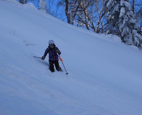 2016年1月23日札幌国際スキー場に近い白井岳支尾根の山を滑る_c0242406_1732936.jpg