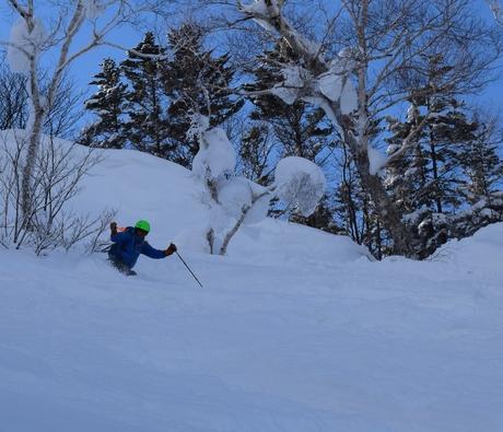 2016年1月23日札幌国際スキー場に近い白井岳支尾根の山を滑る_c0242406_1742420.jpg